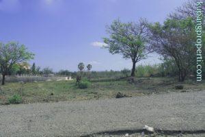 Dijual Tanah di Oesapa Kota Kupang (lokasi 5)