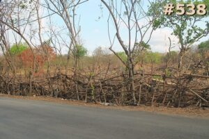 #538 Dijual Tanah di Alak Kupang