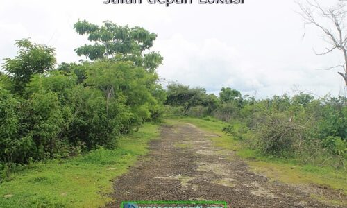 #559 Dijual Tanah 112 Ha di Kupang Barat